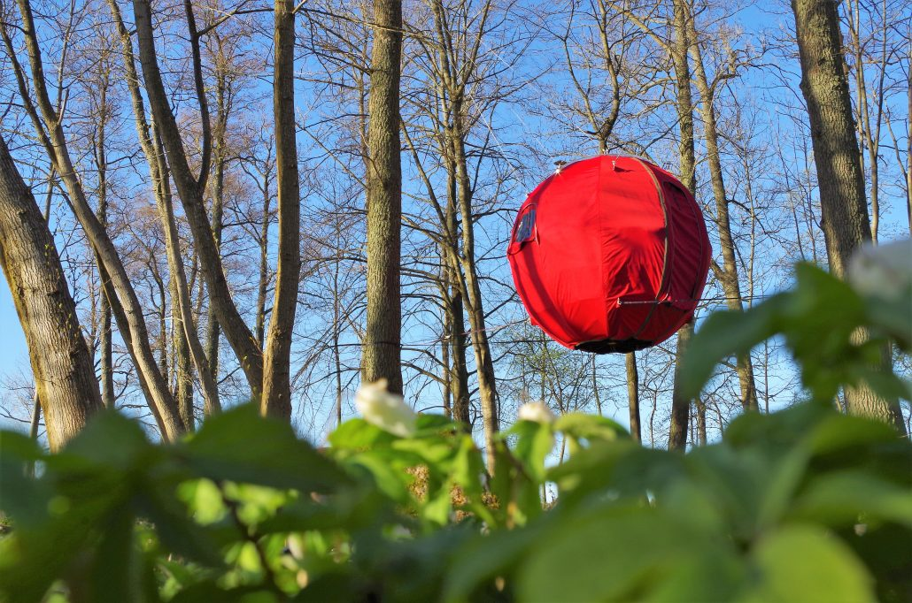Red Tree Tent hanging in woodland with blue sky
