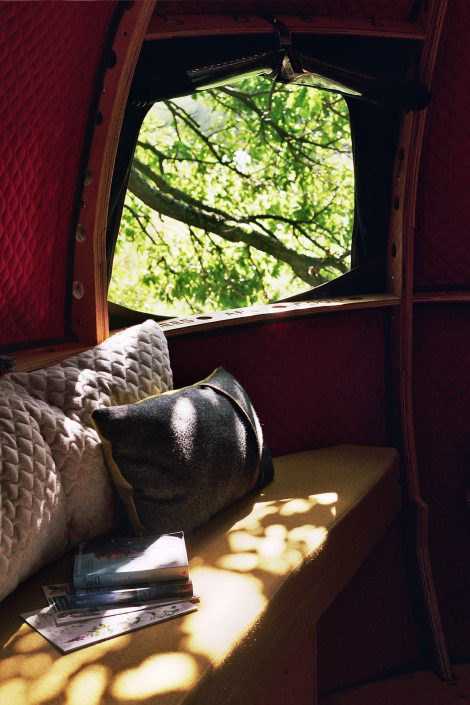 Looking out the window of the Tree Tent with sun shining on seat and cushions