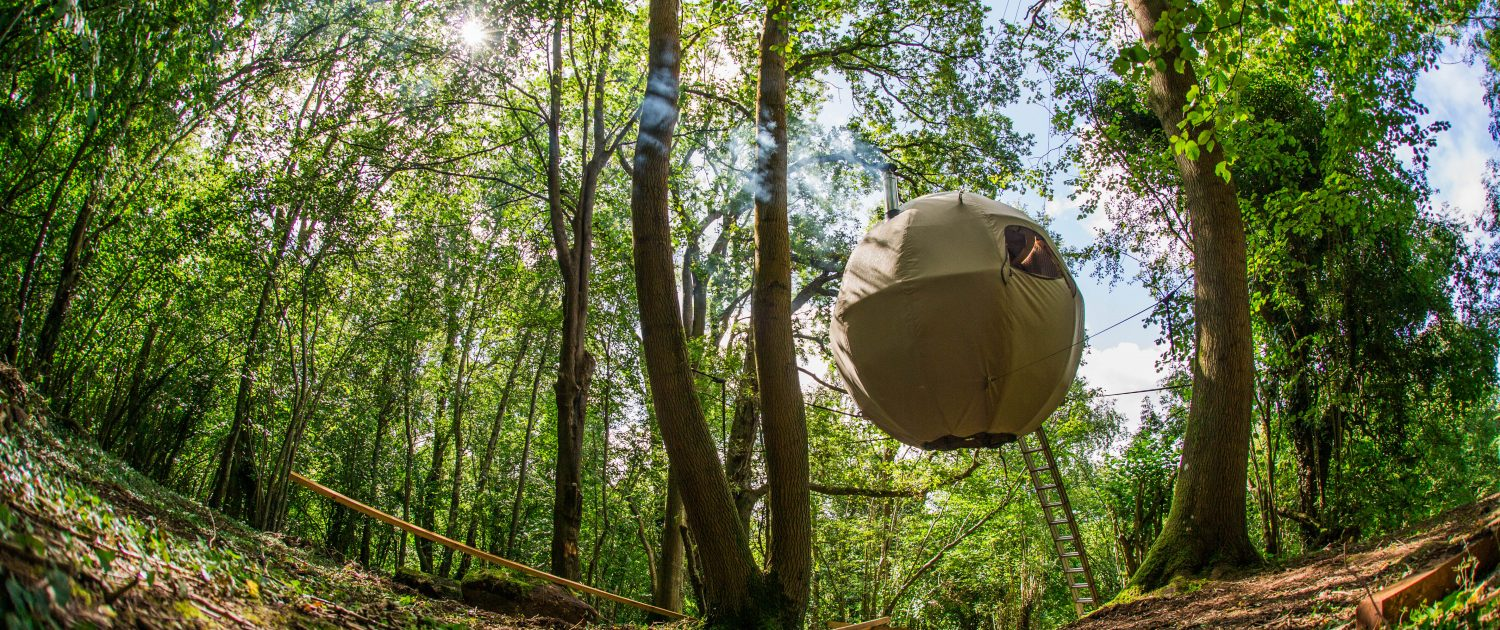 PreviousNext & The Tree Tent - the Worldu0027s Greatest Escape | Tree Tents