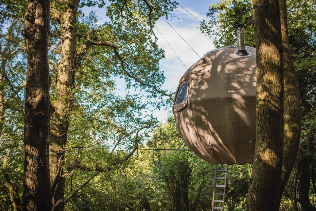 Tree Tent hanging harmoniously with the woodland